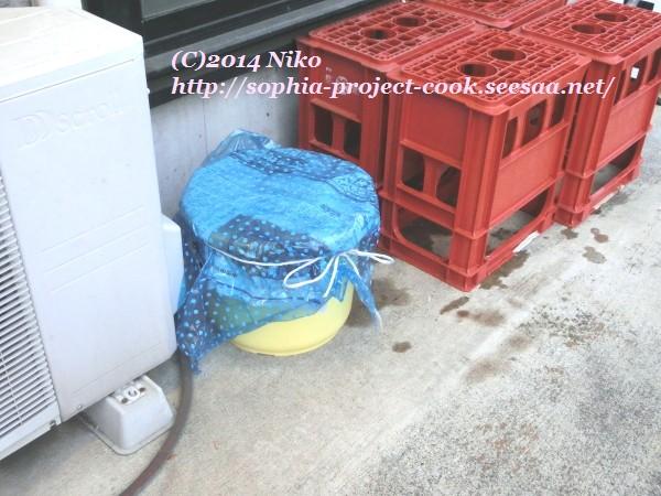 CIMG7156料理.jpg