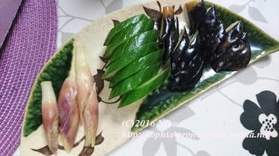 2016-08-09 19.29.27料理.jpg