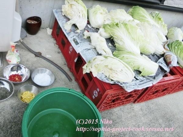 CIMG0561料理.jpg