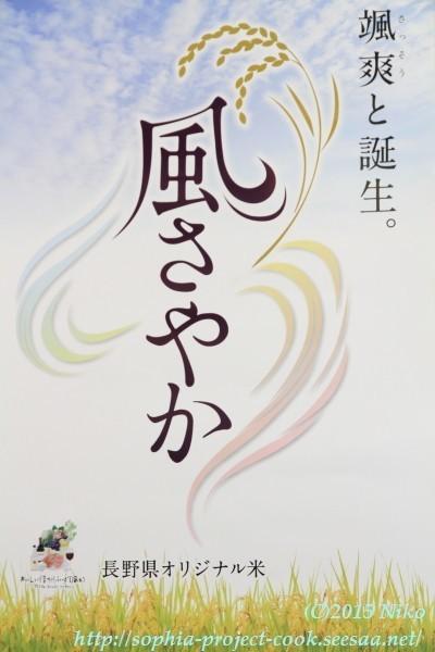 IMG_4411料理.jpg